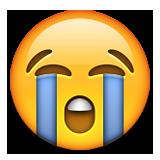 Hıçkırarak ağlayan ifadesi