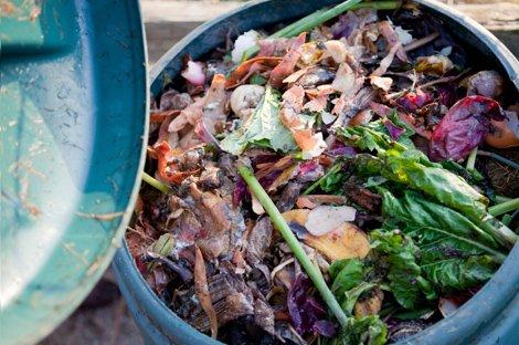 Rivasol Solucan Gübresi Kompostu Nasıl Yapılır?