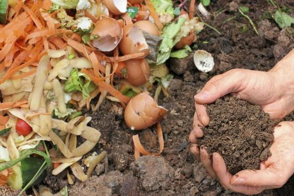 Rivasol Solucan Gübresi kompostu ile atıklar toprağa dönüyor
