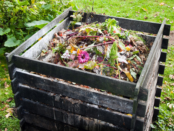 Rivasol Solucan Gübresi Komposta Neler Koyulabilir?